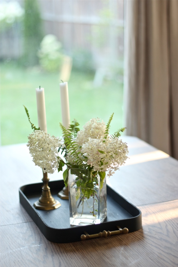 Limelight Hydrangea & Boston Ferns